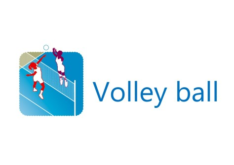 Logo Volley ball